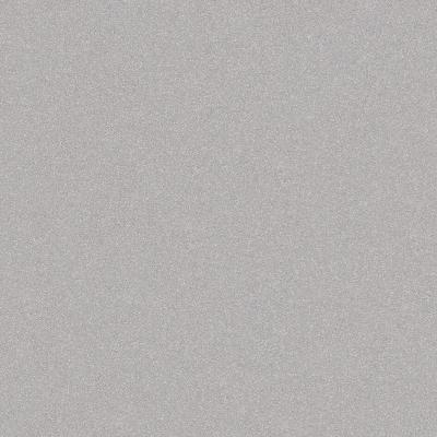 600-x-600-mm-full-body-tiles-glossy-dove-matt
