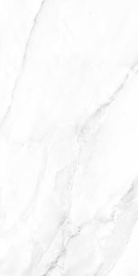 800-x-2400-mm-porcelain-slab-glossy-desert-statuario-01