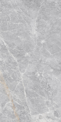 800-x-2400-mm-porcelain-slab-glossy-elenza-silver-01