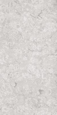 1200-x-2400-mm-porcelain-slab-glossy-stilo-grey-01
