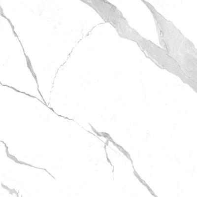 800-x-800-mm-porcelain-tiles-glossy-bianco-statuario-venato-1