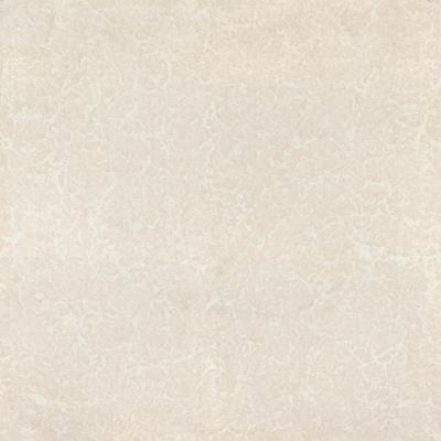 600-x-600-mm-regular-soluble-salt-tiles-glossy-art-dc-02